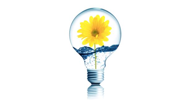 4 - Découvrez le véritable esprit start-up